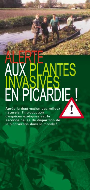 Alerte aux plantes invasives en Picardie