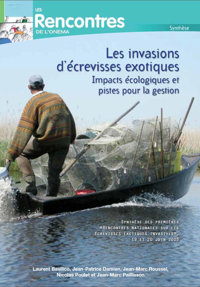 Les invasions d'écrevisses écologiques : impacts écologiques et pistes pour la gestion
