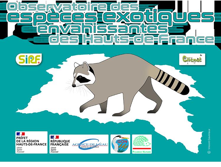 Observatoire des espèces exotiques envahissantes des Hauts-de-France