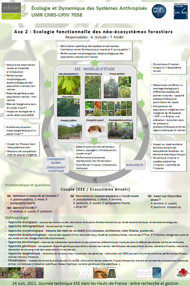 Poster. Ecologie fonctionnelle des néo-écosystèmes forestiers