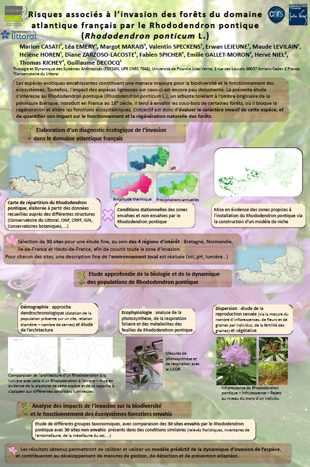 Poster. Risques associés à l'invasion des forêts du domaine atlantique français par le Rhododendron pontique